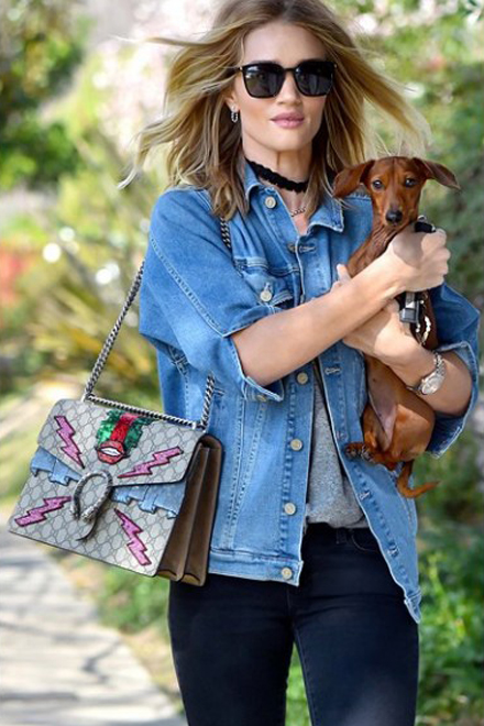 Beyonce Dakota Johnoson Sienna Miller with Guccis Dionysus Handbag